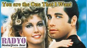 John Travolta & Olivia Newton-John - You are the One That I Want (1978)