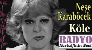 Neşe Karaböcek - Köle (1974)